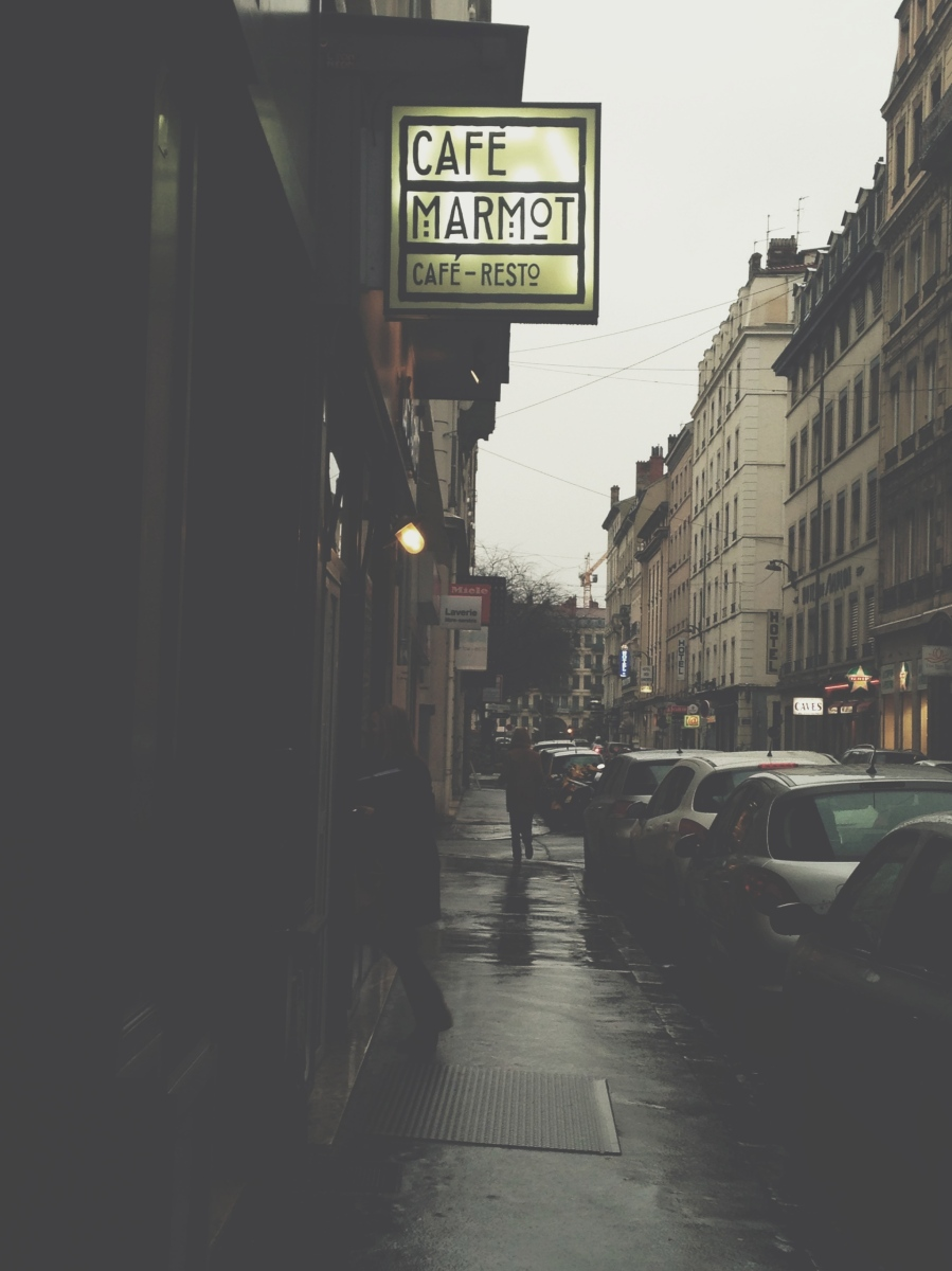 Lyon Diaries (8)